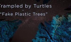 Trampled By Turtles Fake Plastic Trees Official Video Radiohead Cover